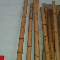 Large Bamboo Pole approx 5cm thick $30 per metre