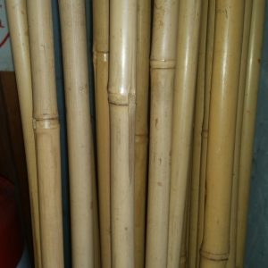 Bamboo Pole approx 1.5cm thick 290cm long $7.00
