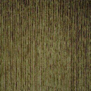 Profile Grass