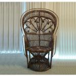 Peacock Morticia Chair, Dark Brown Wicker
