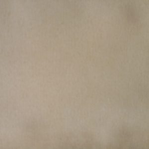 Warwick Outdoor Fabrics Kona Tan
